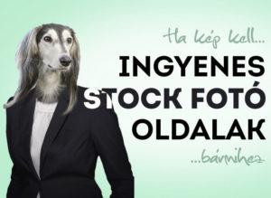 Ingyenes Stock fotóoldalak